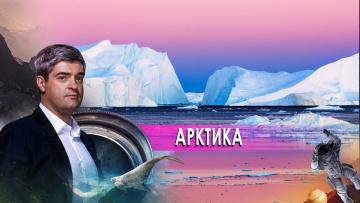 """""""НИИ. Путеводитель"""" по Арктике. (09.10.2020)"""