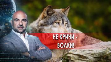 """Не кричи - волки! """"Как устроен мир"""" с Тимофеем Баженовым. (11.06.2021)"""
