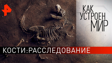"""Кости: расследование. """"Как устроен мир"""" с Тимофеем Баженовым (27.02.2020)"""