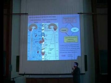 Принципы передачи информации в нервной системе