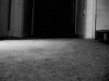 Призрак кота попал на видео