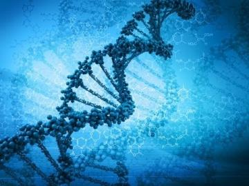 Ученые признали существование Творца, крах теории Дарвина.