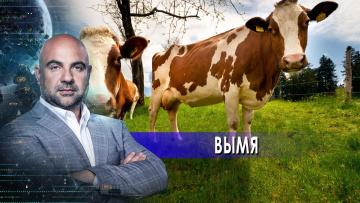 """Вымя. """"Как устроен мир"""" с Тимофеем Баженовым. (26.04.2021)"""