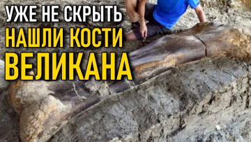 Нашли кости великана и сразу же засекретили