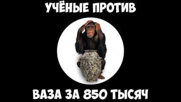 Учёные против - Ваза за 850 тысяч