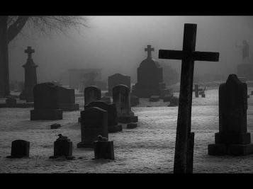 Настоящая жизнь кладбища. Отражение