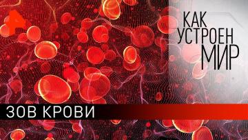 """Зов крови. """"Как устроен мир"""" с Тимофеем Баженовым (10.02.2020)"""