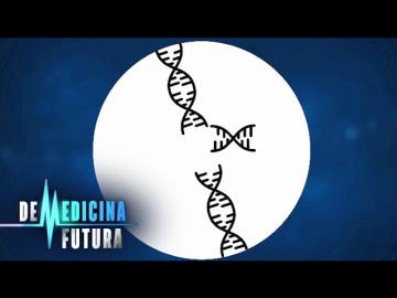 Генетика. Редактирование генома. Медицина будущего