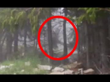 Снежный человек попал на видео