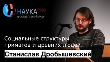 Социальные структуры приматов и древних людей. Станислав Дробышевский