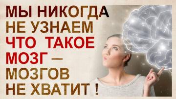 Цитаты о мозге и генах известного нейробиолога, психолингвиста Татьяны Черниговской.