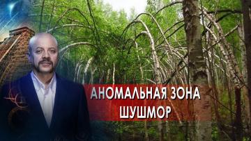 Аномальная зона Шушмор. Загадки человечества с Олегом Шишкиным (16.09.2021)