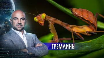 """Гремлины. «Как устроен мир"""" с Тимофеем Баженовым (18.01.2021)"""