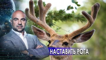 """Наставить рога. «Как устроен мир"""" с Тимофеем Баженовым (27.11.2020)"""