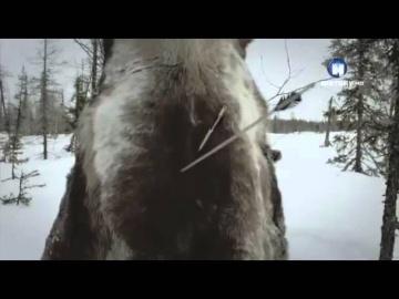 Древние воины Сибири