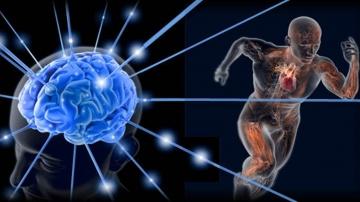 Генетика бога. Скрытые резервы человеческого организма