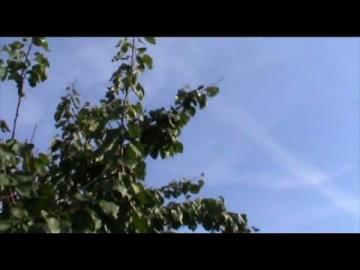 Химтрейлы Белгород 22.09.2011