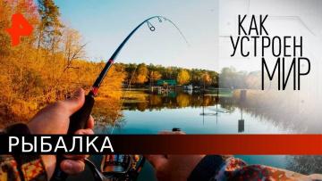 Рыбалка. Как устроен мир с Тимофеем Баженовым (18.05.2020)