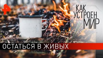 """Остаться в живых. """"Как устроен мир"""" с Тимофеем Баженовым (19.11.2019)"""