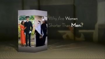 Почему женщины ростом ниже мужчин ?