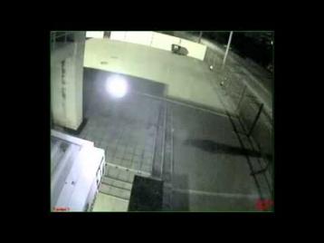 В Запорожской синагоге видеокамера засняла «привидение»