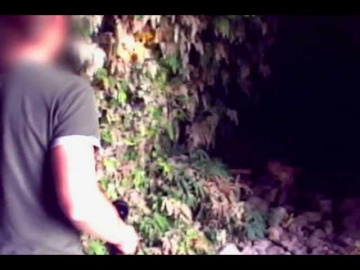 Ошеломительные кадры с таинственным существом в Колумбии: пещерный тролль или пришелец?